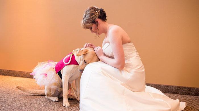 Este perro de asistencia consiguió calmar el ataque de ansiedad de la novia en el día de su boda