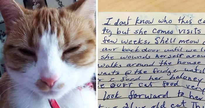 Este gato volvió a casa con una nota revelando que tiene una familia secreta