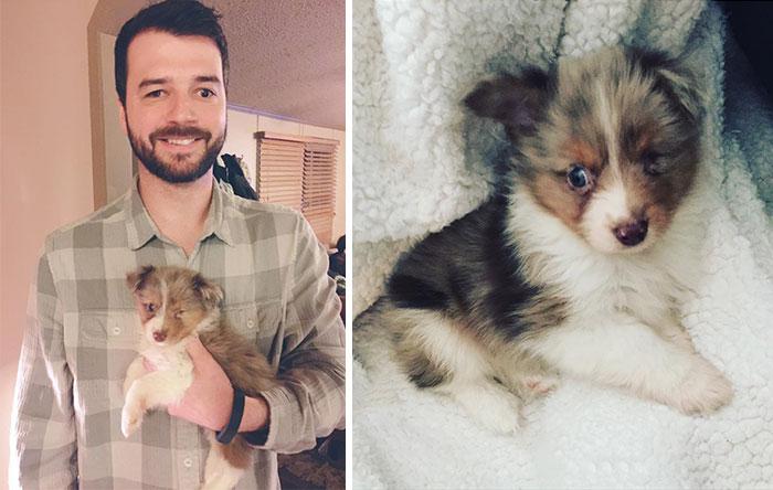 Este hombre solo ve por un ojo, así que se compró un perro tuerto que nadie quería
