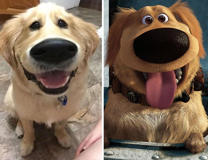 """Este filtro de Snapchat hace que tu perro se parezca a Dug de la película """"Up"""""""