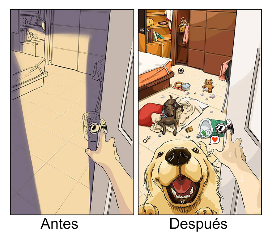 vida-antes-despues-perro-maimai-john (6)