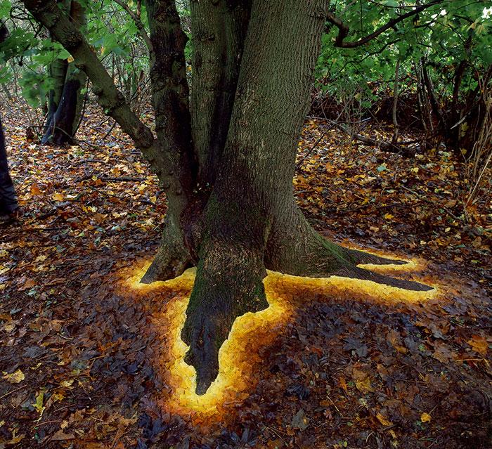 Mágico arte terrestre, por Andy Goldsworthy