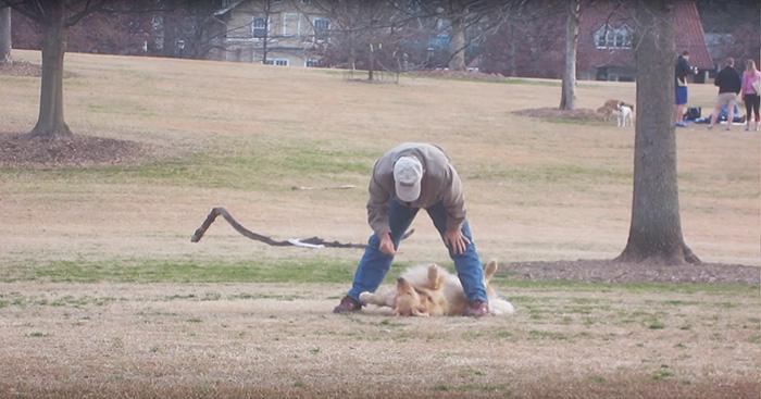 perro-haciendose-muerto-parque-piedmont-atlanta (1)