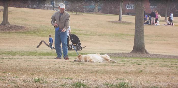 perro-haciendose-muerto-parque-piedmont-atlanta (2)