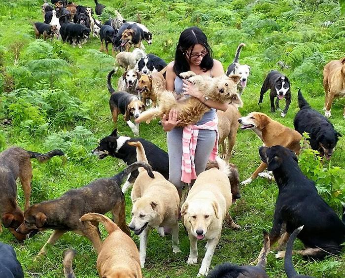 Territorio de Zaguates en Costa Rica es el paraíso para los perros callejeros