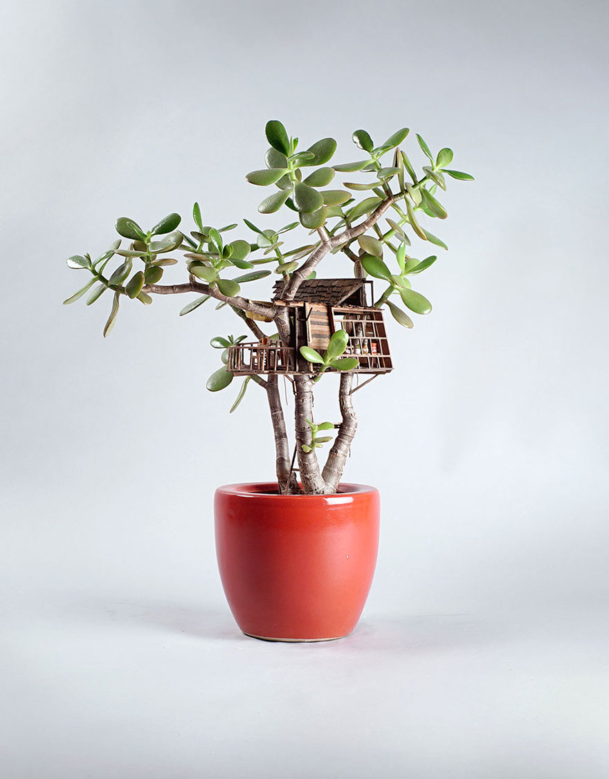 casitas-diminutas-en-las-plantas-jedediah-corwyn (1)