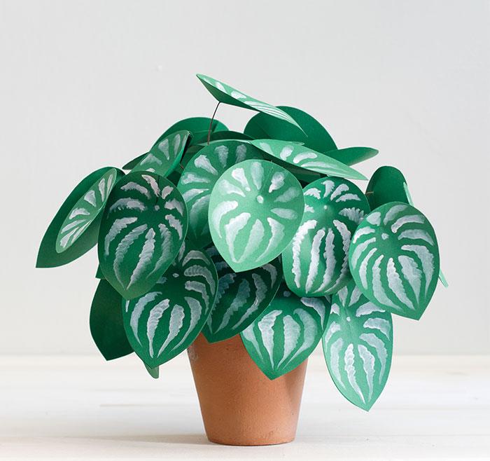 No podía cultivar plantas de verdad, así que hice estas de papel