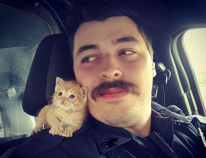 Este policía bigotudo encontró al compañero perfecto
