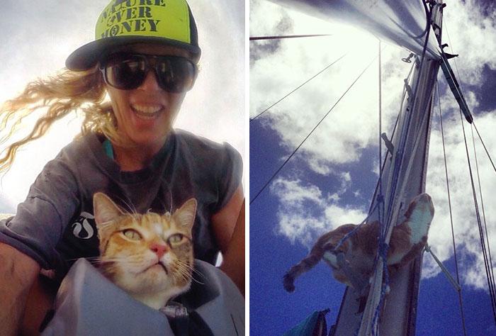 navegar-mundo-barco-gato-amelia-liz-clark (1)
