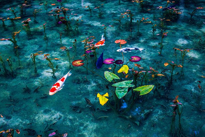 Tras fotografiar Japón en la época de lluvias, algunas fotos parecen pinturas