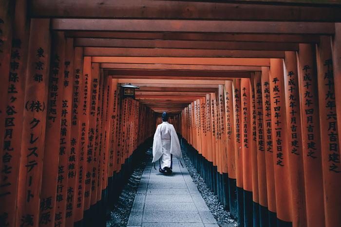 15 Razones por las que deberías visitar Japón