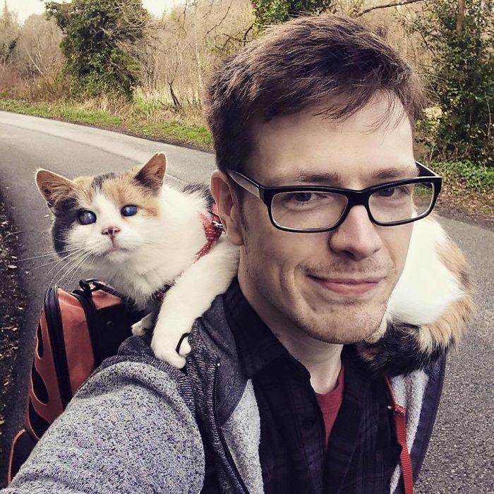 Mi gata ciega ha escalado la montaña más alta de Irlanda con fines benéficos