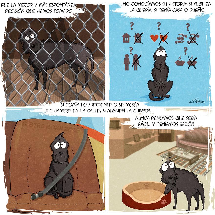 comic-perro-adoptado-bird-born-2