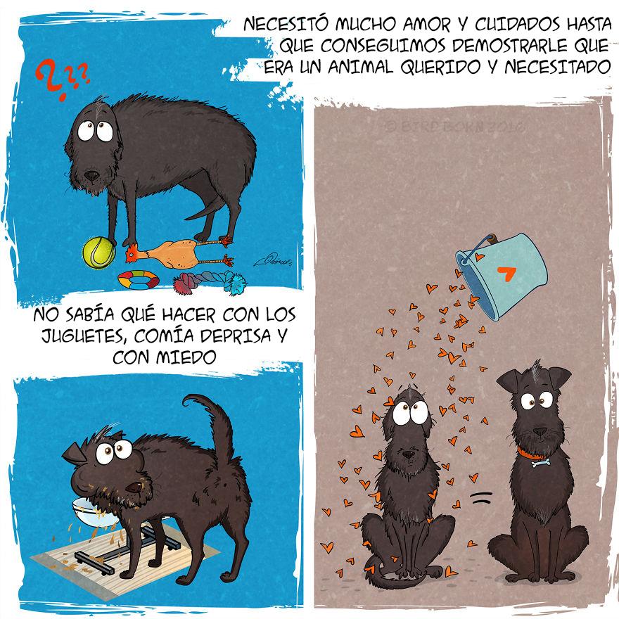 comic-perro-adoptado-bird-born-4