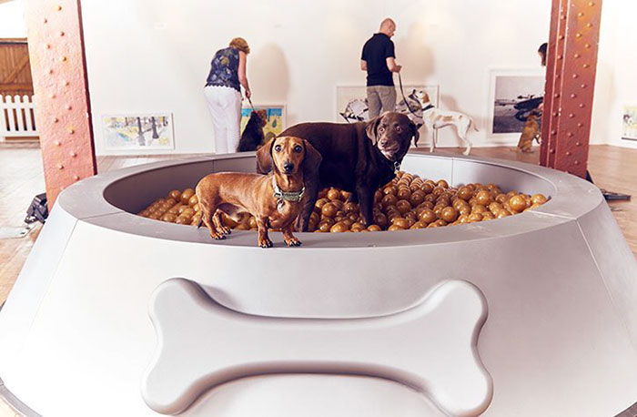 exposicion-arte-perros-play-more-dominic-wilcox-londres (3)
