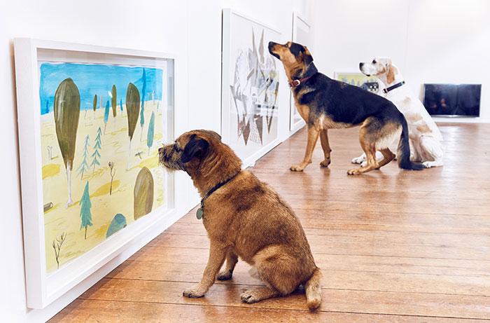 La primera exposición de arte para perros del mundo