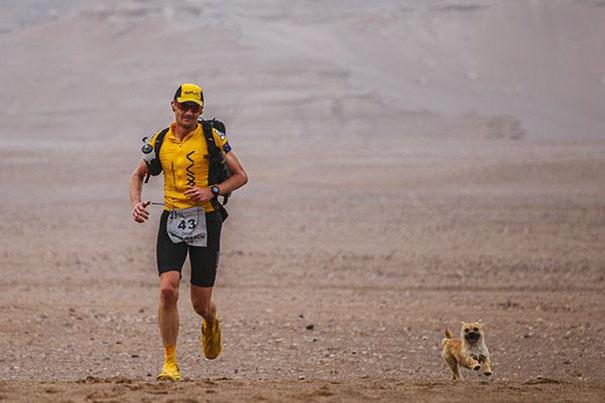 perro-callejero-corredor-maraton-dion-leonard-gobi-china (1)