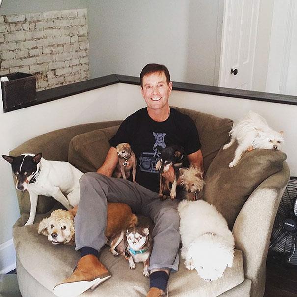 perros-ancianos-adoptados (11)