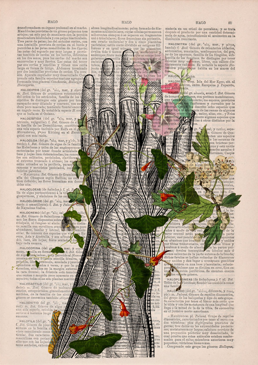 Estas ilustraciones anatómicas con flores insuflan nueva vida a los ...