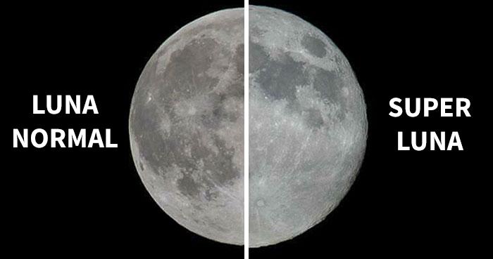 8 Divertidas reacciones a una Super Luna decepcionante