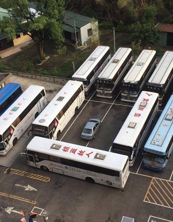 Tras Aparcar Como El Culo, Estos Autobuses Se Vengaron De él