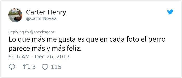 abueloperro-8