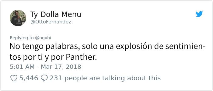 panther-13