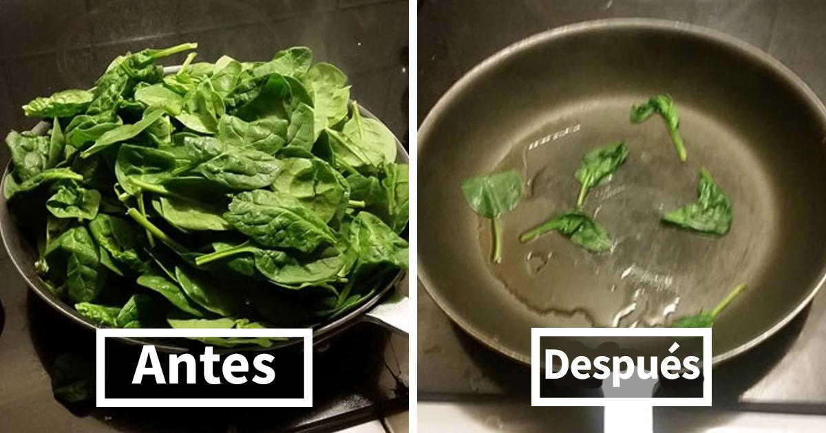 10+ Divertidos memes que no deberías ver mientras comes si no quieres atragantarte