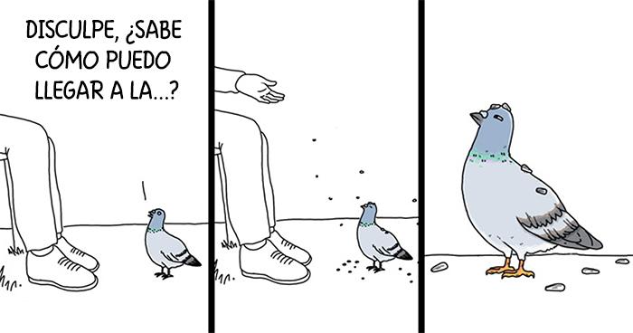 Muestro lo que dirían los pájaros si pudieran hablar (20 imágenes)