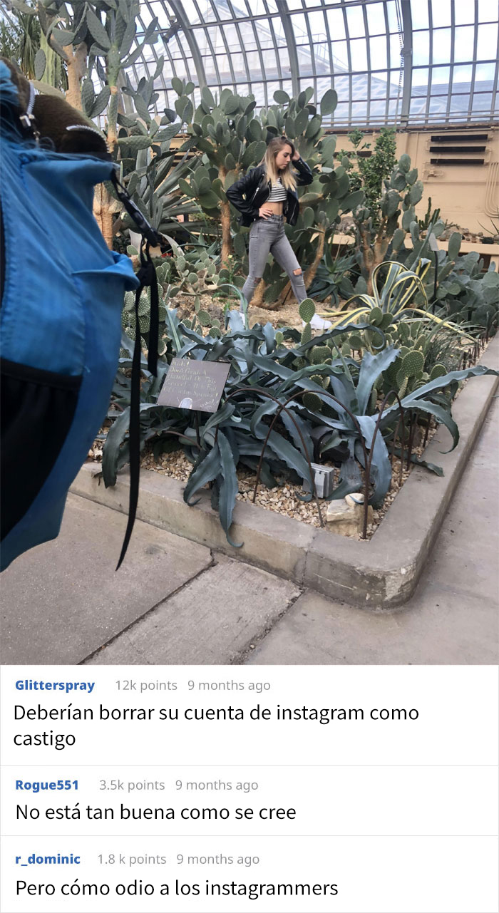 Esta Mujer Pisoteó Las Plantas De Un Invernadero Para Hacerse Fotos A Pesar De Que El Personal Le Pidió Que Parara