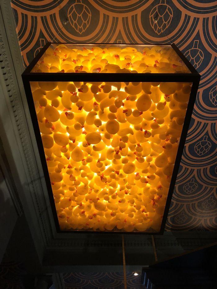 La Luz Del Techo Está Llena De Patitos De Goma En Este Pub De Edimburgo