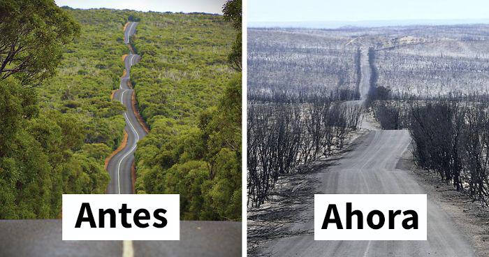 19 Fotos de Australia antes y ahora que muestran los daños de los incendios
