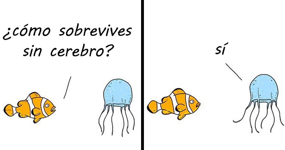 20 Cómics que muestran lo que dirían los animales si pudieran hablar (Nuevas Imágenes)