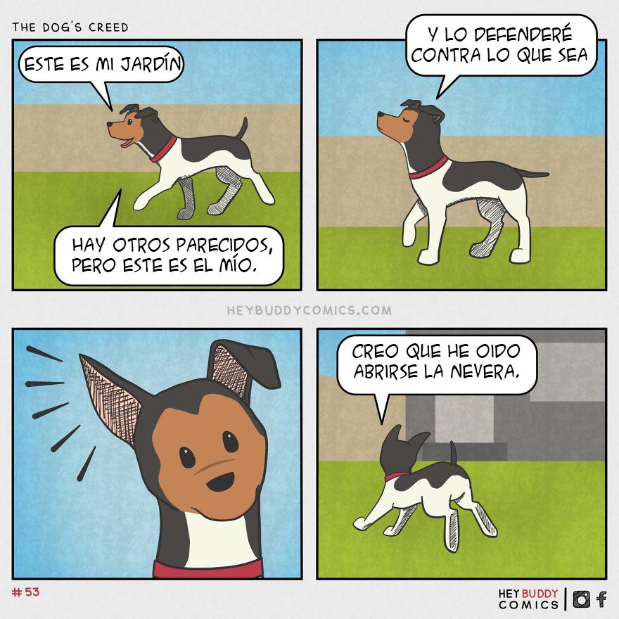 El Credo De Un Perro