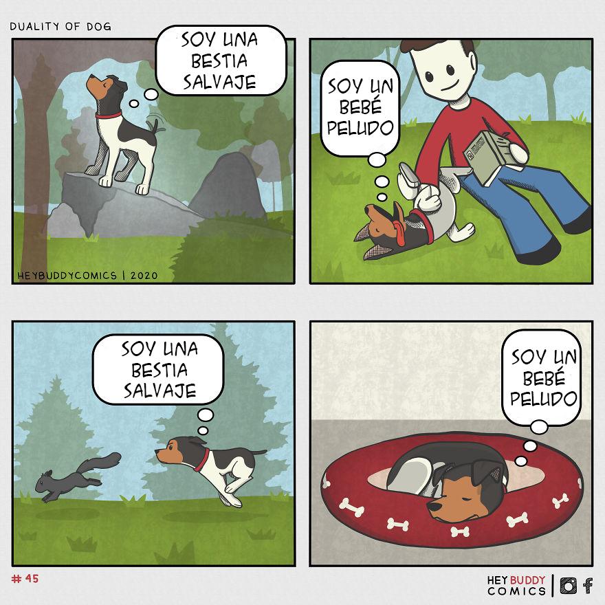 Dualidad Del Perro