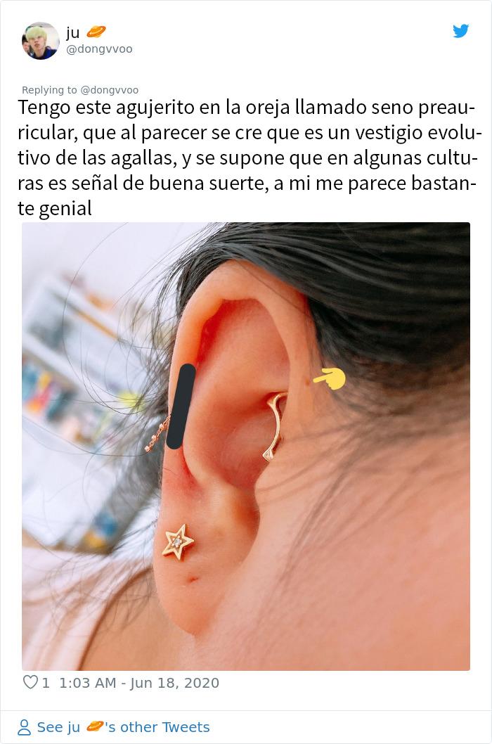 La gente se da cuenta de que estos agujeritos sobre sus orejas pueden tener una explicación evolutiva