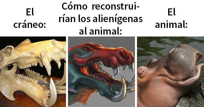 Cómo los alienígenas reconstruirían animales basándose en sus cráneos VS su aspecto real (28 imágenes)
