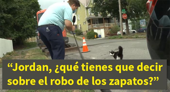 A este gato le gusta tanto robar los zapatos de los vecinos que su dueño ha creado un grupo de Facebook para devolverlos