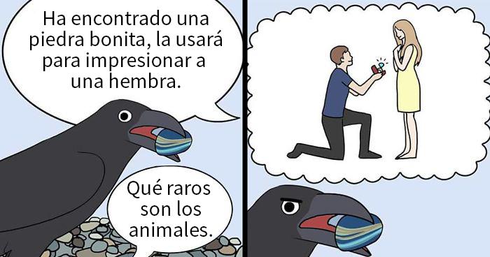 20 Divertidos cómics sobre loros, ilustrados por la dueña de los pájaros