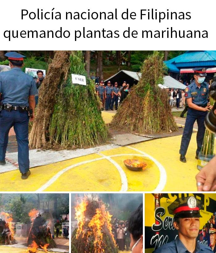 Qué podría salir mal si quemas 3 toneladas de marihuana en una zona residencial