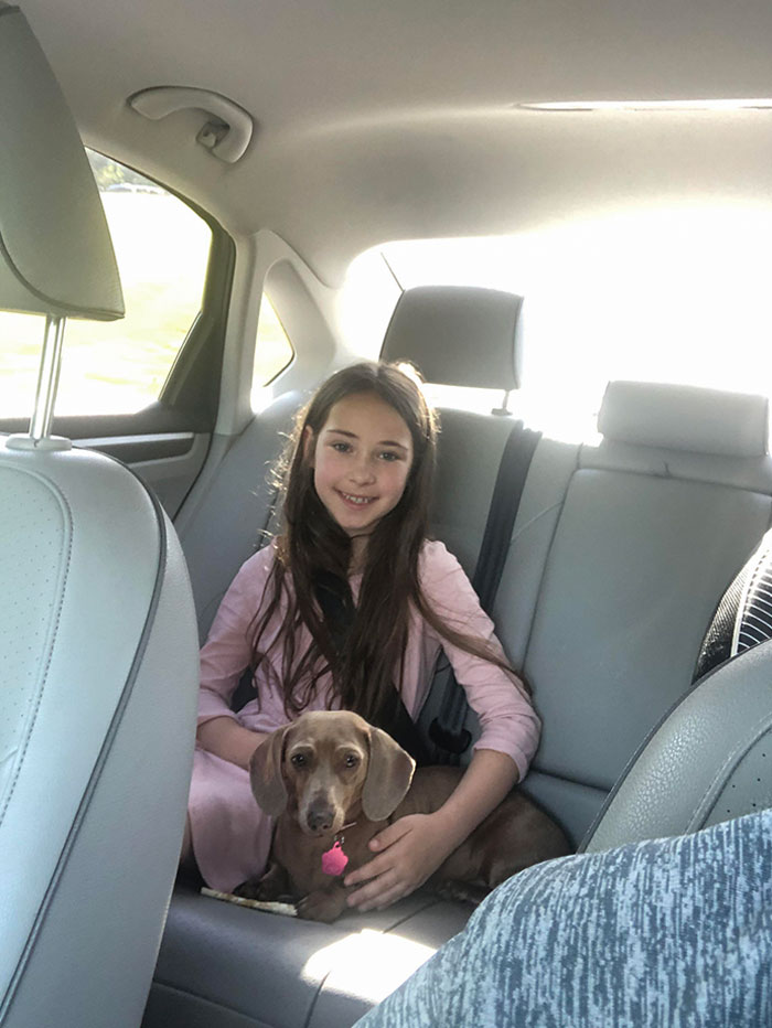 Mi Hija Llevaba 5 Años Pidiendo Un Perro. Esta Semana Hemos Adoptado A Su Nuevo Mejor Amigo