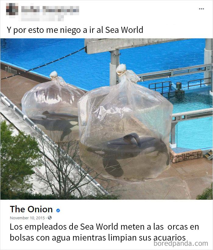 Odio El Sea World