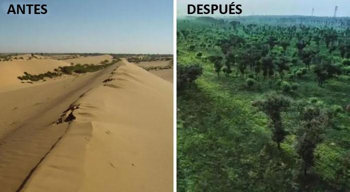 En el Noroeste de China ha desaparecido el desierto de Mu-Us, de 42.200 kilómetros cuadrados