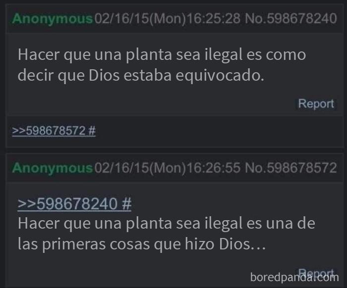 Plantas ilegales