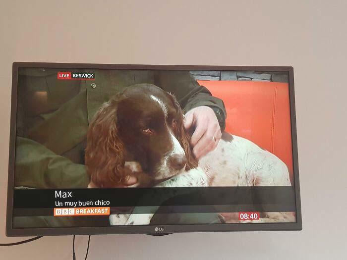 Es el contenido como este por el que veo BBC Breakfast