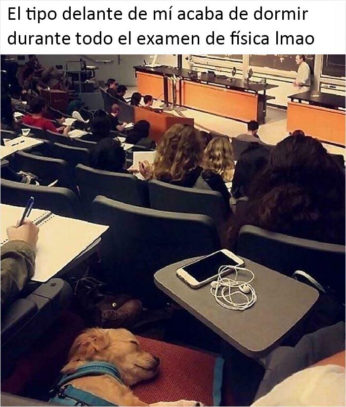 La Universidad es dura