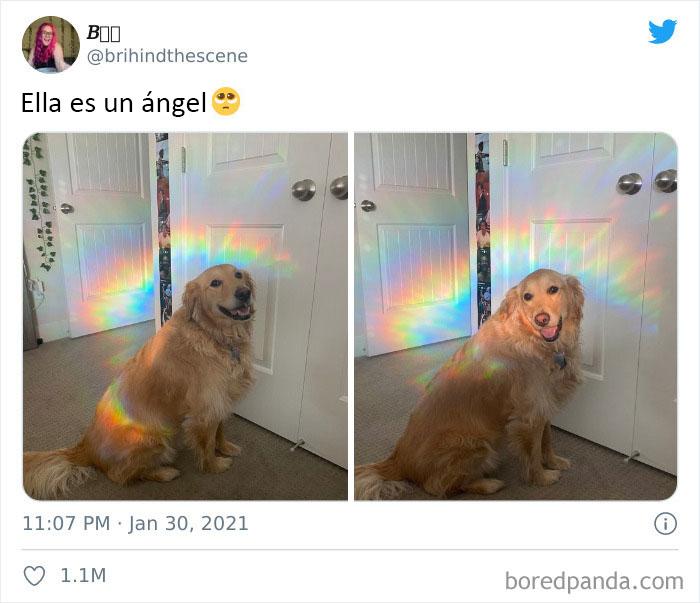 Es un ángel