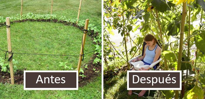 50 Personas con un toque para las plantas comparten ideas geniales de jardinería