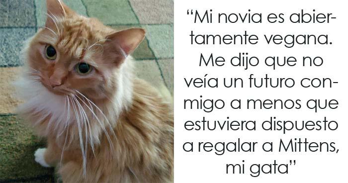 Esta chica vegana exigió a su novio que regale su gato, dándole un ultimátum