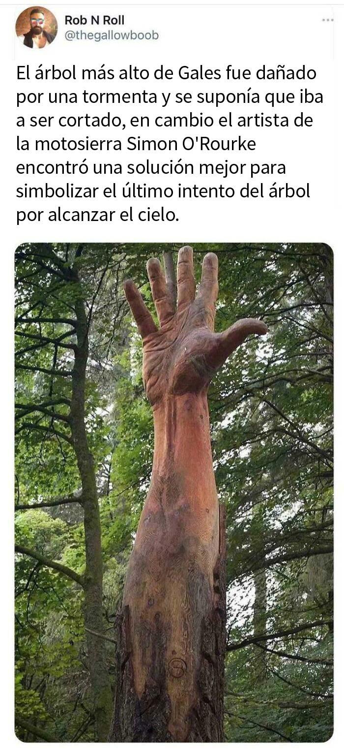 Mano gigante en el bosque